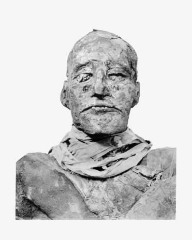 ramses-III-mummy-head